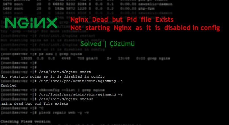 Nginx Dead but Pid file Exists Hatasının Çözümü