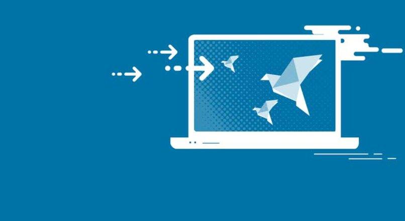 Web Site Nasıl Kurulur ? Başlangıç Rehberi
