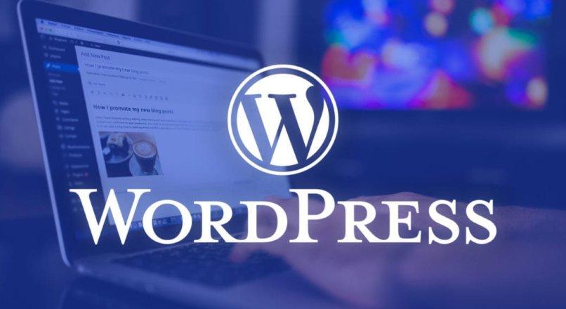 (Solution) Page Builder – WordPress 5.5 Update Problem